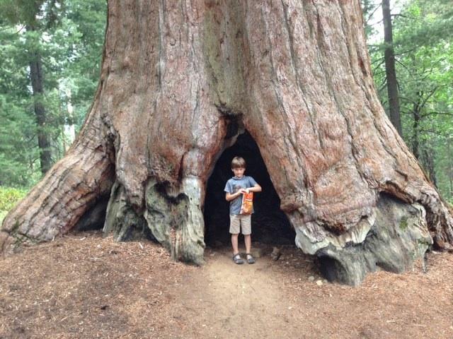 Yosemite National Park, dag 2